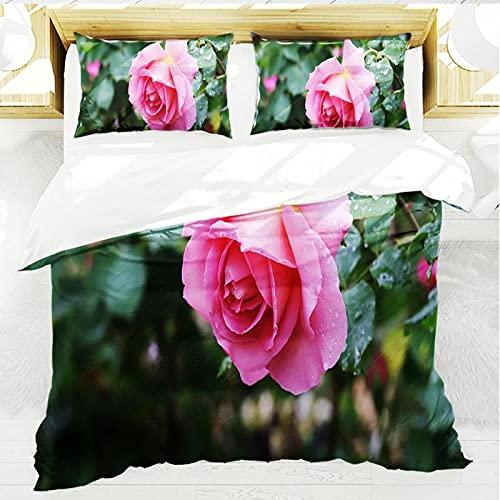 Set biancheria da letto 3 pezzi 200x200cm Romanzo rosa rosa Super morbido, traspirante e confortevole Copripiumino in microfibra Un copripiumino con cerniera + 2 federe 50x75 cm