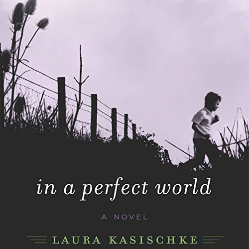 In a Perfect World audiobook cover art