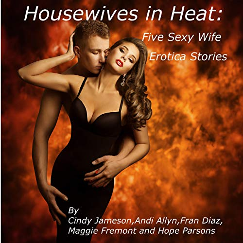 Housewives in Heat cover art