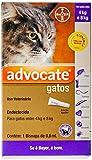 Antipulgas Advocate Bayer para Gatos de 4kg até 8kg - 3 Bisnagas de 0,8ml