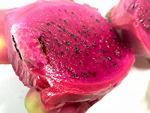 ベトナム産 ドラゴンフルーツ 赤肉種 13玉〜16玉入り(1箱)