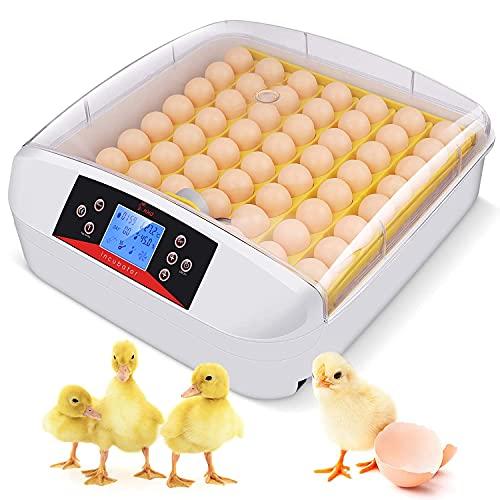 Incubatrice Automatica per 55 Uova, Incubatore Intelligente Digitale con Schermo a LED di Temperatura e Sensore di Temperatura