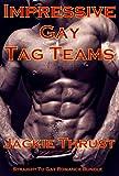 Impressive Gay Tag Teams: Straight To Gay Romance Bundle