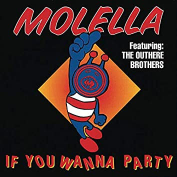 If You Wanna Party - Single