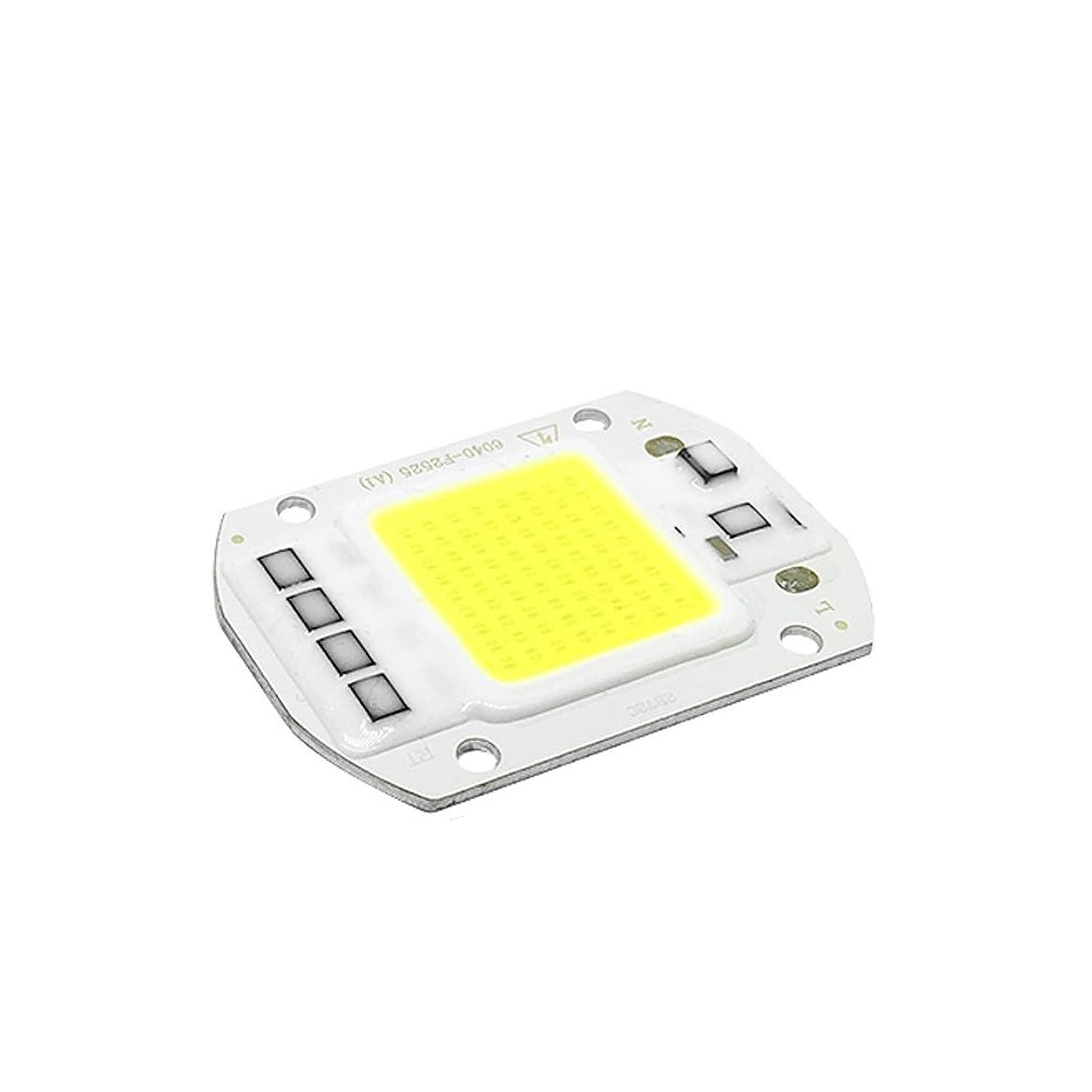 放課後作業ロープLEDGLE 50W LEDチップ バルブライトランプDIY スポットライト ハイパワー AC 110V 6500K 90LM/W 昼白色 1個セット