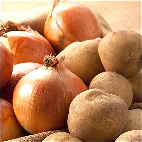 北海道産 越冬 じゃがいも Aセット 10kg (男爵いも7kg・玉ねぎ3kg) 野菜 秋野菜 セット 詰め合わせ お取り寄せ