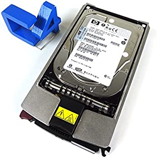 HP 411089-B22 300 GB, 15K RPM SCSI 1-yr warranty (411089B22) [Electronics]