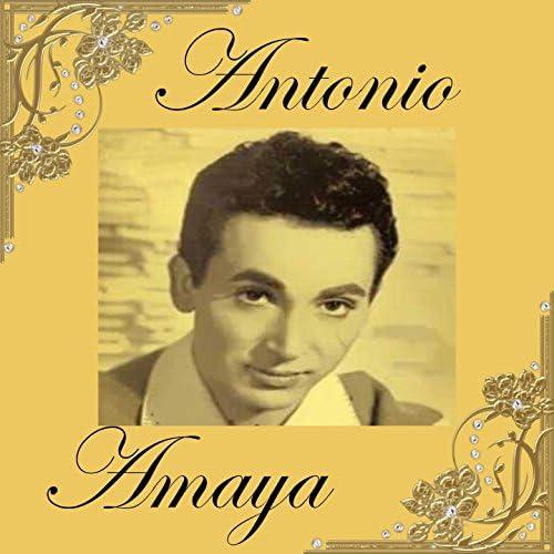 Antonio Amaya