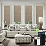 Yoolax Motorized Cellular Shades Room Darkening, Blackout Single Cell Honeycomb Blinds Customized Size, Cordless Pleated Window Shade with Valance for Smart Home Office (Coffee)
