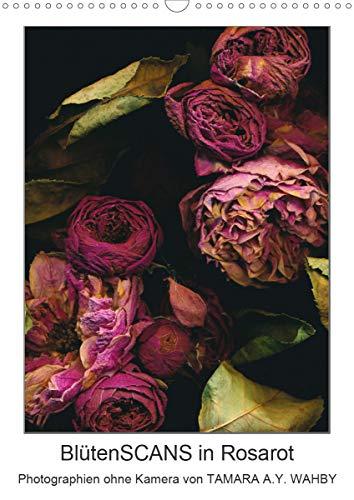 BlütenSCANS in Rosarot - Photographien ohne Kamera (Wandkalender 2021 DIN A3 hoch)