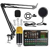 AERJMA Tarjeta de sonido en vivo Equipo completo Condensador Micrófono Tarjeta de sonido Set K Song Teléfono móvil Ordenador Live Sound Card oro