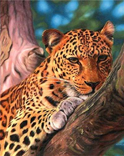 GenericBrands Pintar por Numeros para Adultos Niños Pintura Leopardo en el árbol para DIY Pintura al óleo sobre Lienzo con Pinceles y Acrílica Pinturas 16 * 20 Pulgadas Sin Marco
