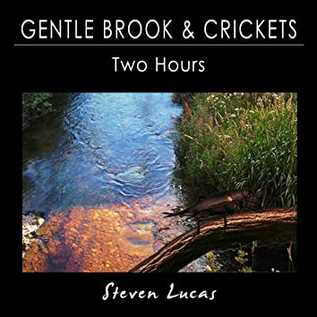 Gentle Brook and Crickets - Two Hours