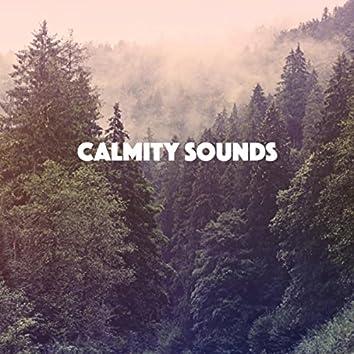 Calmity Sounds