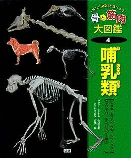 「体」と「運動」を調べよう!骨と筋肉大図鑑〈4〉哺乳類―ウサギ、キリン、ウマ、ウシ、イヌ、コウモリ、チンパンジーなど