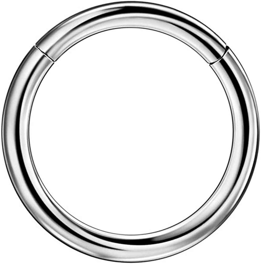 ZAZANGO Basic Hinged Nose Rings for Women and Men 20g 18g 16g 14g 12g 10g Piercing Hoops for Nose and Ear Piercing 1 Piece