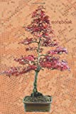 Notebook: Spruce Sageretia theezans Fir Tree Bonsai Lined Notebook / Journal Gift, 110 Pages, 6x9, Soft Cover, Matte Finish