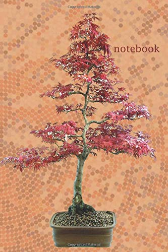 Notebook: Spruce Sageretia theezans Fir Tree Bonsai Lined No