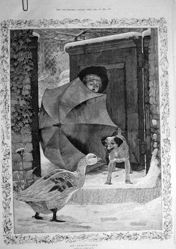 Regenschirm für Kinder, Antik-viktorianischer Druck, 1885