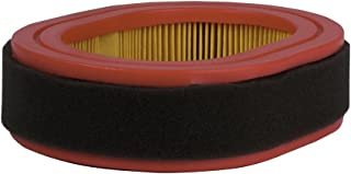 Southland Outdoor Power Equipment A203222P Replacement Air Filter