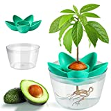 muscccm Avocado Seed Planting Growing Kit Avocado Planting Seed Starter Tray with Plant Holder,Cool Gifts Garden Gifts for Women Kids(Without Seeds)