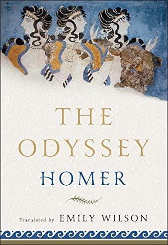 The Odyssey: Catalyst Hero: Homer, Wilson, Emily: Books - Amazon.com