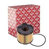 Febi-Bilstein 32097 Filtre à carburant