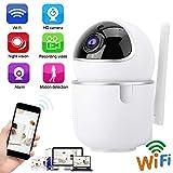 Scheda di sicurezza PTZ WiFi Security Home Outdoor, Wireless Mini PTZ 1080P HD WiFi Telecamera di sicurezza IP Monitor di sicurezza(EU Plug)