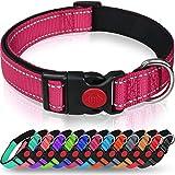 Taglory Collar Perro, Collar Nylon Reflectante Neopreno Forrado Ajustable para Perros Pequeños, Fucsia