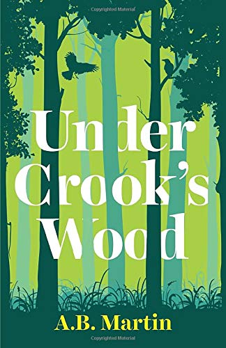 Under Crook's Wood: An adventure story for 9-13 year olds (Sophie Watson...