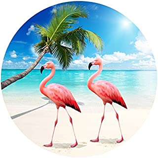 Screen Door Magnets – Twist, Click and Lock - Keep People and Pets from Walking into a screen door (Flamingos)