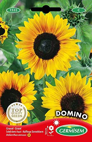 Germisem Domino Zonnebloemzaden 2 g