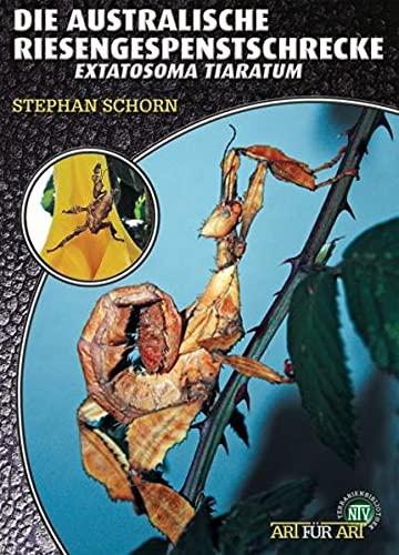 Die Australische Riesengespenstschrecke: Extatosoma tiaratum