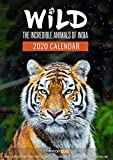 Tallenge Wild-The Incredible Animals of India Wall Calendar 2019 for Home
