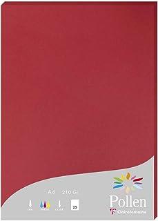 Clairefontaine 24212C - Un étui de 25 feuilles Pollen 21x29,7 cm 210g, Rouge groseille