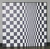 Bridget Riley: Paintings From the 1960s and 70s by Robert Kudielka (1999-06-04)