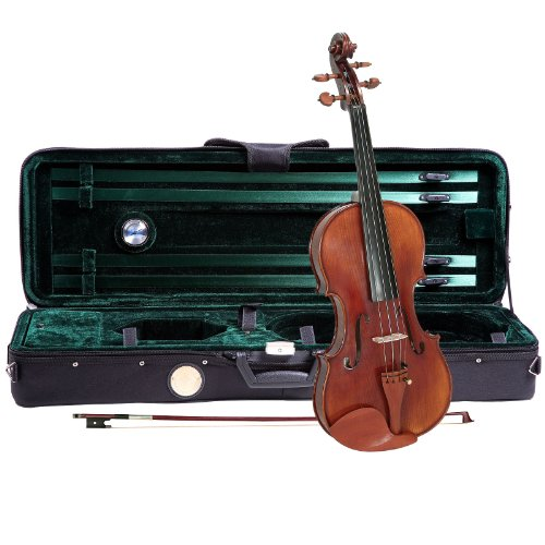 professional violin brands