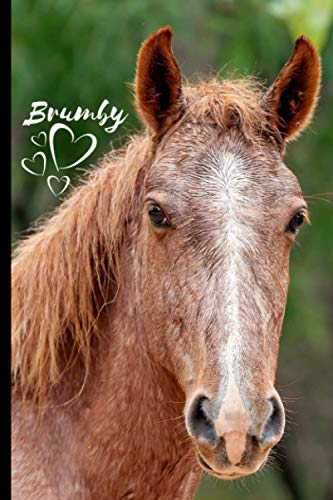Brumby Horse Notebook For Horse Lovers: Composition Notebook 6x9' Blank Lined Journal