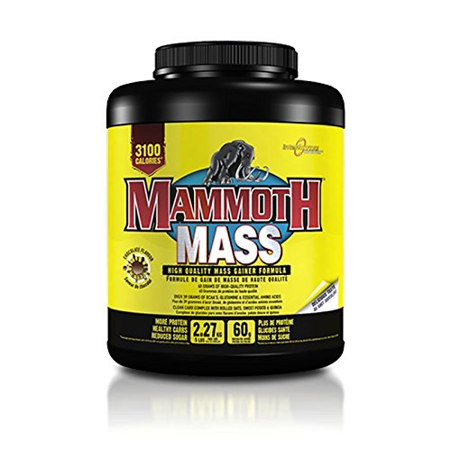 Interactive Nutrition Mammoth Mass Supplement, 5 lbs, Vanilla