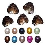 LONGTAP - 10 perlas de ostra con perlas cultivadas de agua dulce en el interior (9-9,5 mm), colores mezclados, cultivadas en agua dulce