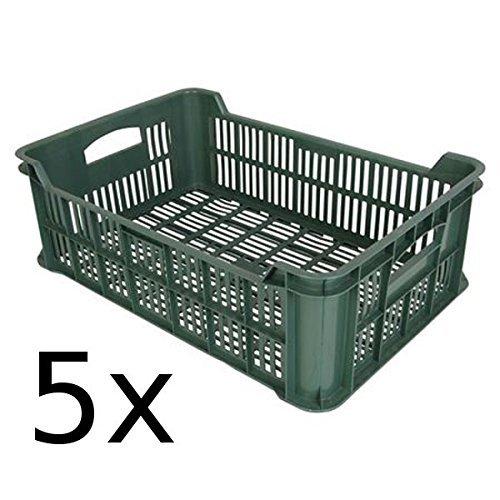BURI 5X Obst- und Gemüsekiste Kartoffelkiste Kiste Lagerkiste Gemüse Transportkiste