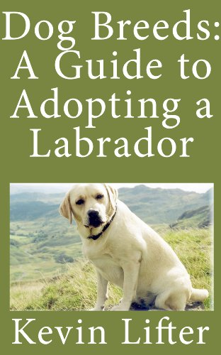 Dog Breeds: A Guide to the Labrador and What You Need to Know Before Adopting One