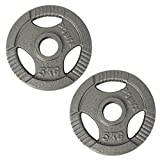 POWRX Discos olímpicos 10 kg Set (2 x 5 kg) - Pesas Ideales para Mancuernas y Barras olímpicas con diámetro 50 mm (Plata)