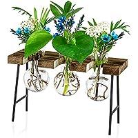 3-Pack Waytoeast Planter Bulb Glass Vase