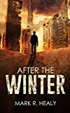 Bargain eBook - After the Winter