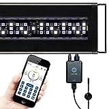Current USA Orbit Marine LED Reef Aquarium Light | Wireless Light and Pump Controller | Loop App - Bluetooth| Fits Aquariums 18'-24'