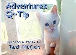 Adventures of Q Tip the little kitten #preschool #books #ad