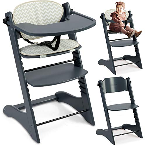 Kinderhochstuhl Hochstuhl Baby Kinderstuhl Babystuhl Mitwachsender, Verstellbar, 11-stufig verstellbare Sitz und Fußstütze Abnehmbares Tablett Polster Ricokids Loni (Dunkelgrau)