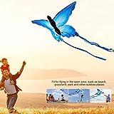 GOTOTOP Cometa de 160 x 90 cm con diseño de mariposas azules para juegos y actividades al aire libre con línea de 30 m, gran regalo para niños