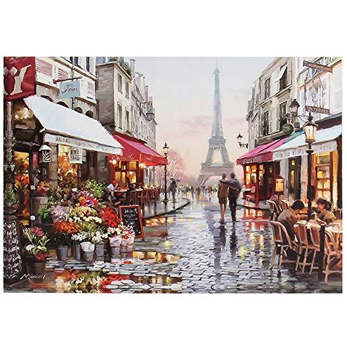 Lunriwis Pintura por Numeros Adultos,DIY Pintura Digital al óleo Kit con Pinceles y Pinturas(Bricolaje Paris Flower Street)